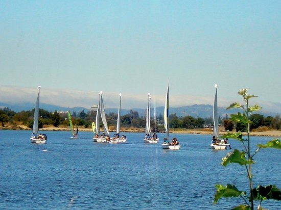 Photo of Tourist Attraction Shoreline Lake Boathouse & American Bistro at 3160 N Shoreline Blvd, Mountain View, CA 94043, United States