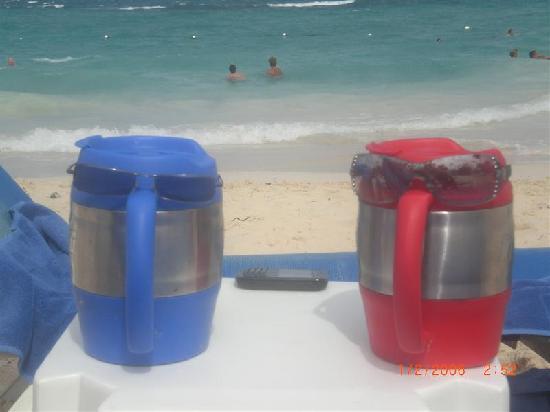 Grand Bahia Principe Punta Cana: LIFE IS A BEACH....