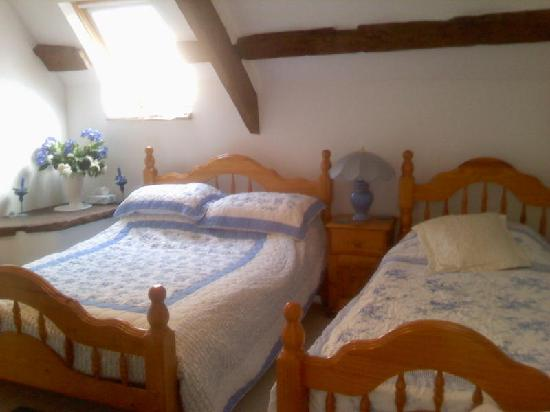 Usk Country Cottages: master ensuite bedroom