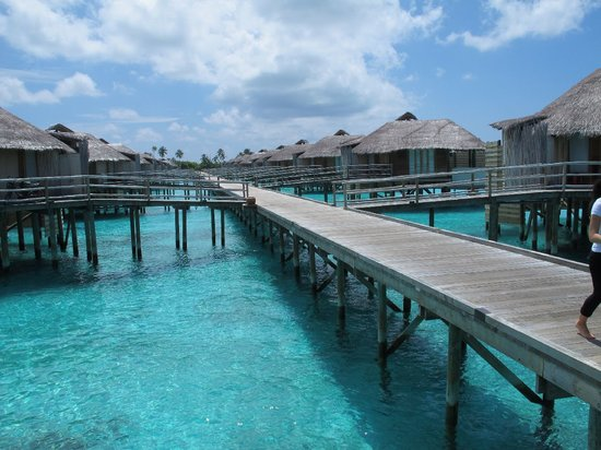 Six Senses Laamu: Jetty A view