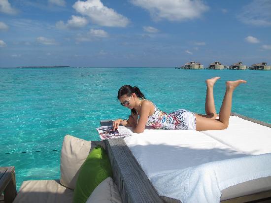 Six Senses Laamu: Six Senses Laamu -Maldives - the Sunny side of life...
