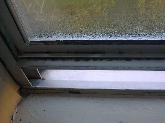 The George Hotel: Bedroom window