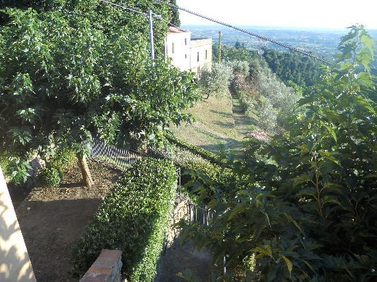 Villa di Papiano : ogród