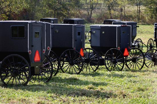 Amish Heartland Tours: Np parking Meters here