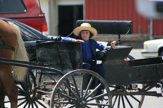 Amish Heartland Tours: Waiting on dad