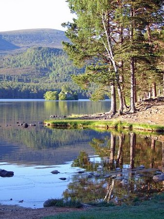 Эвимор, UK: Loch an Eilein Castle