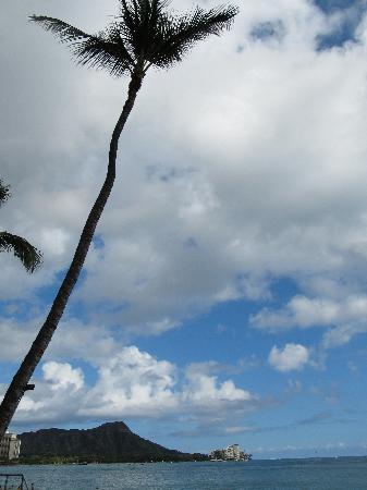 Moana Surfrider, A Westin Resort & Spa: View from Waikiki