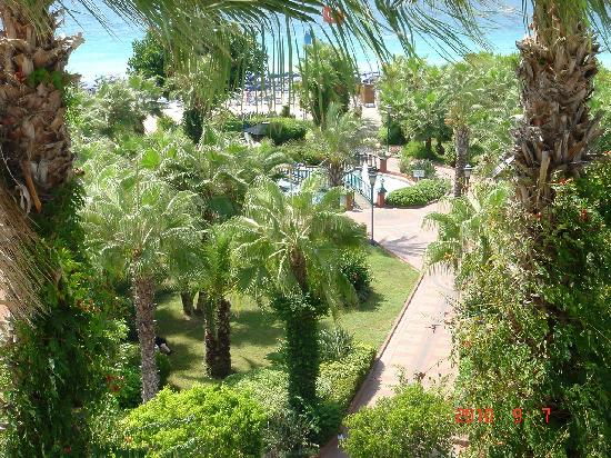 Riviera Hotel & SPA: Park in front the Riviera Hotel Alanya