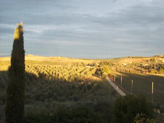Torre di Ponzano - Chianti area - Tuscany -: The Road to the Farmhouse