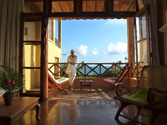 Barberyn Beach Ayurveda Resort: View from the window