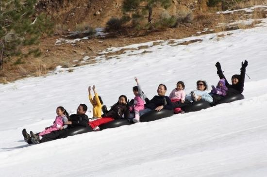 Big Bear Region, CA: sledding train