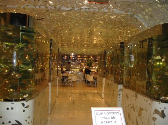 Beijing Noodle No. 9: Entrance at Bejing Noodle No. 9