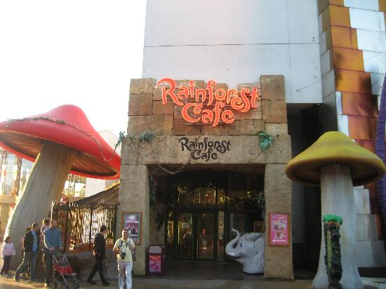 Rainforest Café: Rainforest Cafe exterior.