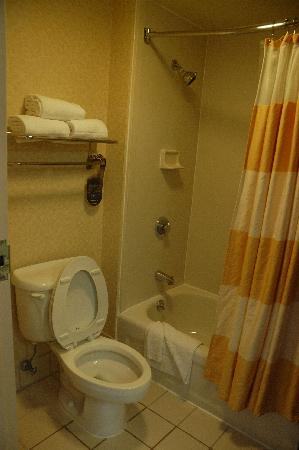 SpringHill Suites Chicago Southwest at Burr Ridge/Hinsdale: toilet/shower