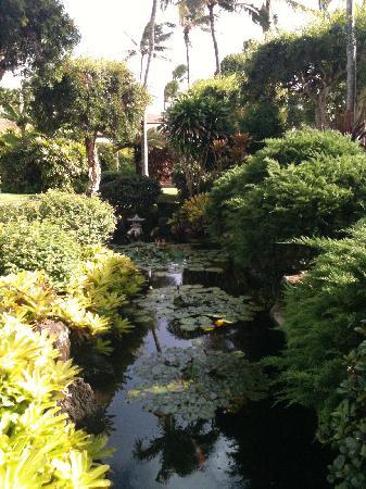 Pono Kai Resort: Very lovely pond area....