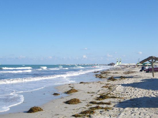 Hasdrubal Thalassa & Spa Djerba: La plage vue d'un transat