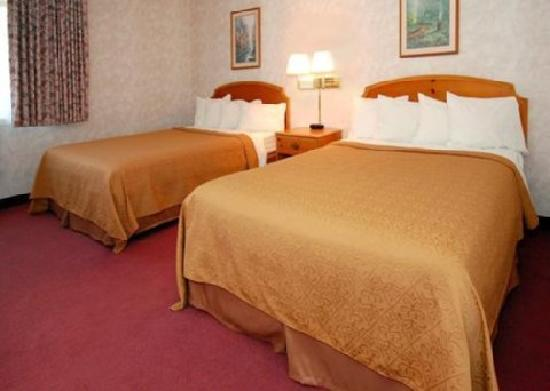 Quality Inn Oakwood: One of our Gorgeous Rooms