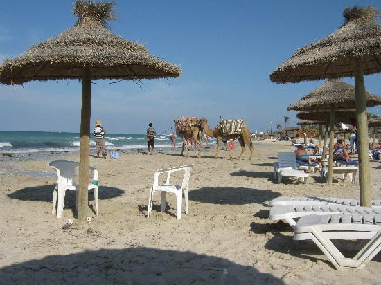 Iberostar Mehari Djerba: Hotel beach, looking towards the east.