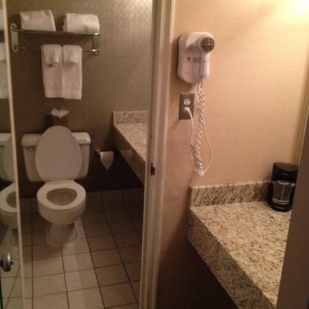 Hotel St. Regis : bathroom