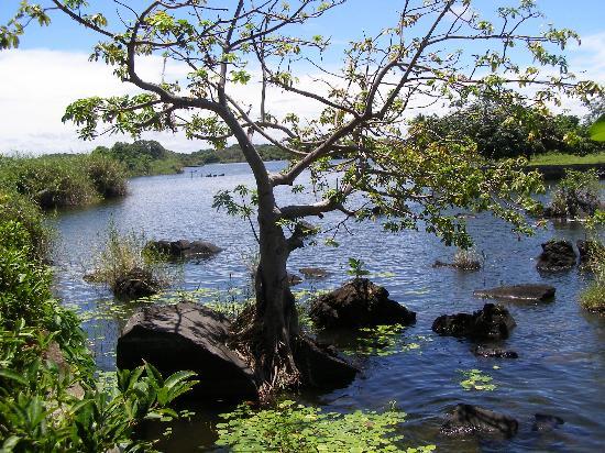 Isletas El Roble : Ballade sur l'île