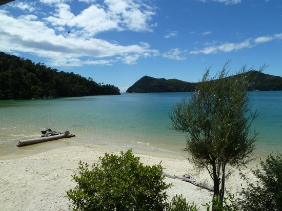 Abel Tasman National Park, Nueva Zelanda: Beautiful clean waters. Photo taken from the steps of the bach.