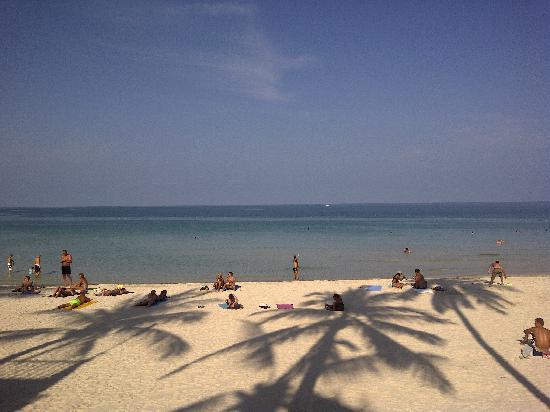Phangan Bayshore Resort: view from hotel