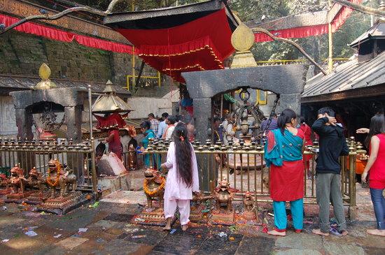 Temple Dakshinkali : templo