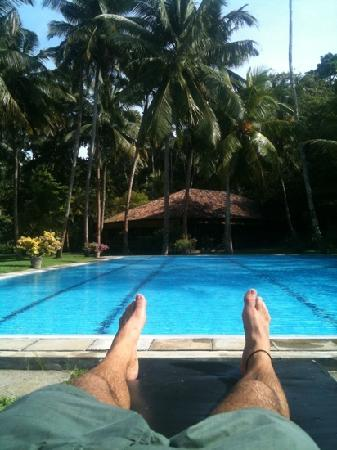 Talalla Retreat: view from the lounge by the pool