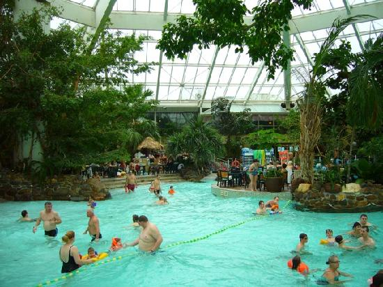 Complexe piscine photo de center parcs de vossemeren for Piscine center parc