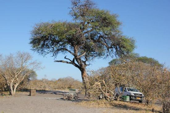Linyanti Reserve, Botsuana: Campsite