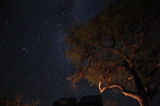 Linyanti Reserve, Botsuana: MIrar el cielo