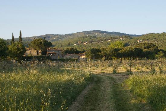 La Casa Colonica: Typical Umbrian Tuscan location