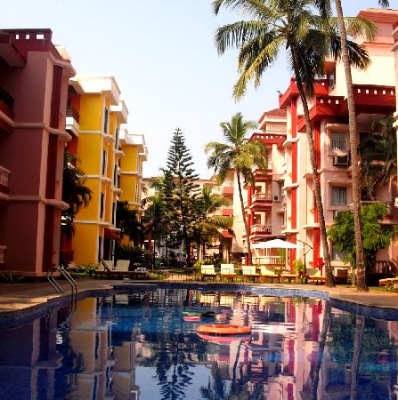 Adamo The Bellus Goa : View from the Swimming Pool