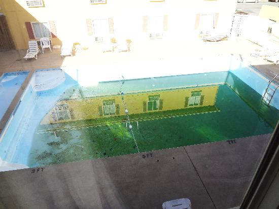 Days Inn And Suites Downtown Gatlinburg Parkway: dangerous green uncovered half drained pool;