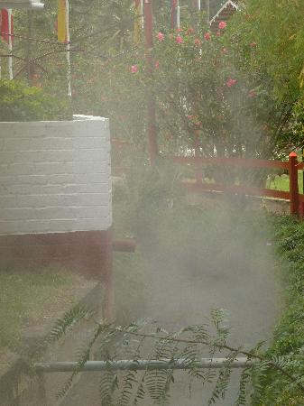 Hotel & Spa Laguna Seca: Dampfender Garten