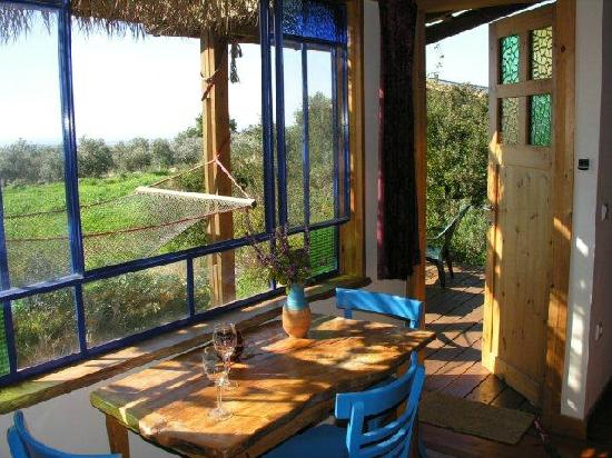 Among Olives and Carobs: View from the wood cabin