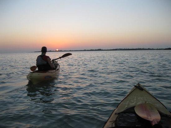Shurr Adventures Everglades: getlstd_property_photo