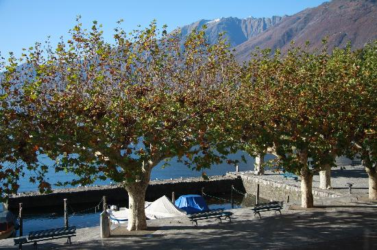 Hotel Schiff-Battello Ascona : View from our room
