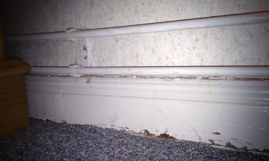 Haus Westfalen : Fußboden/Wand