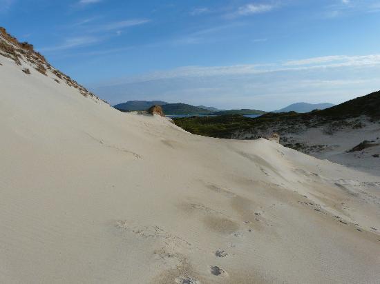 Beautiful dunes, Luskentyre