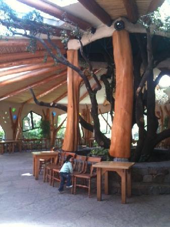 Casa Bosque: Sala de eventos