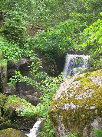 Triberger Waterfall: Cascate di Triberg