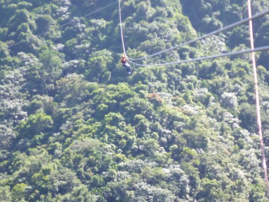 Orocovis, Puerto Rico: El vuelo del Fenix