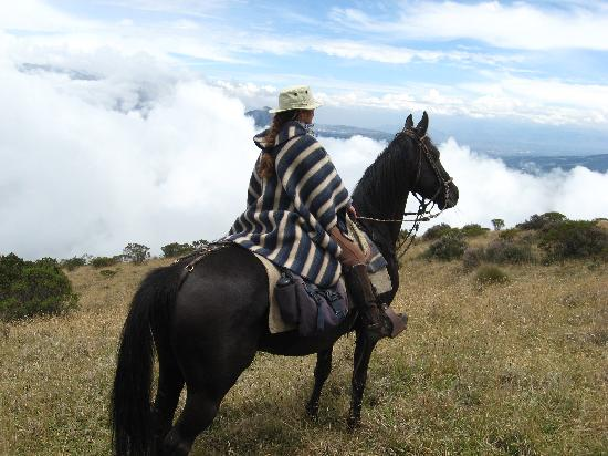 Alegria Farm : au dessus des nuages avec mon cheval