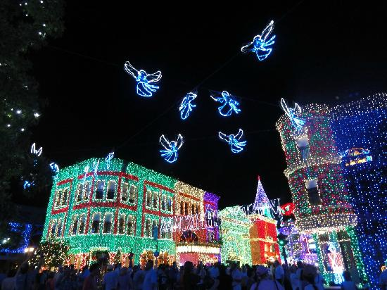 Christmas lights - Picture of Disney's Hollywood Studios, Orlando ...