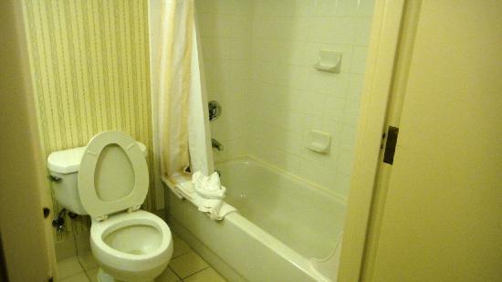 Hilton Garden Inn Portland/Lake Oswego: Bath tub
