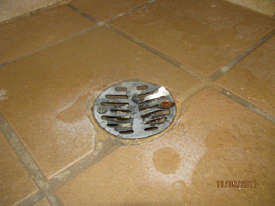 comfort inn u0026 suites levittown sharp broken shower drain cover