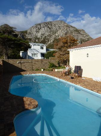 Milkwood Lodge : toller Pool zu Relaxen