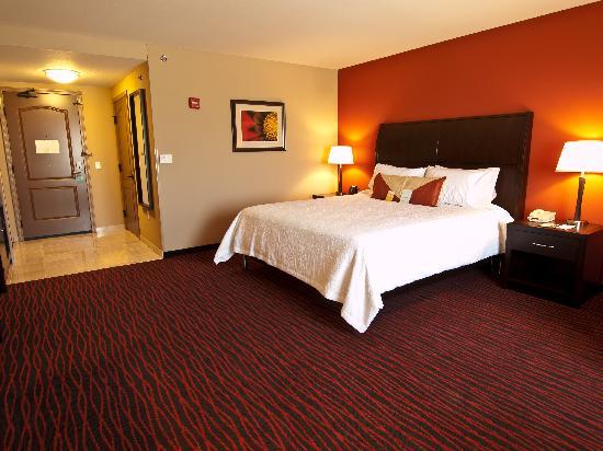Hilton Garden Inn Rapid City: King Accessible