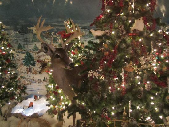 train - Picture of Koziar's Christmas Village, Bernville - TripAdvisor